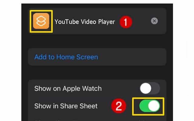 Youtube App Video Pip